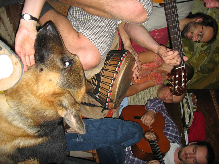 Gitarą-i-Grulem-5