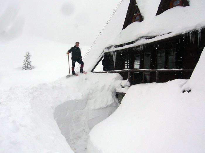 Czasem-sypnie-śnieżkiem