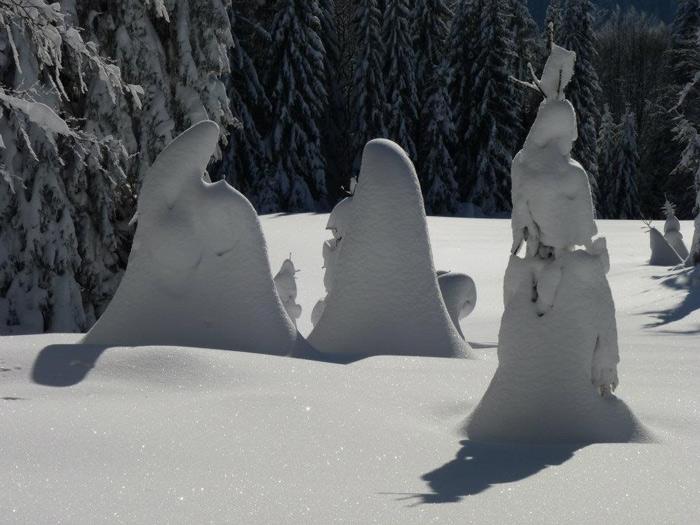 Zima-Rzeźbiarka